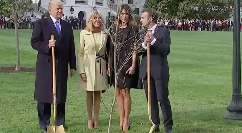 Макрон и Трамп посадили дуб и вспомнили об опыте «революций США и Франции для защиты свободы»
