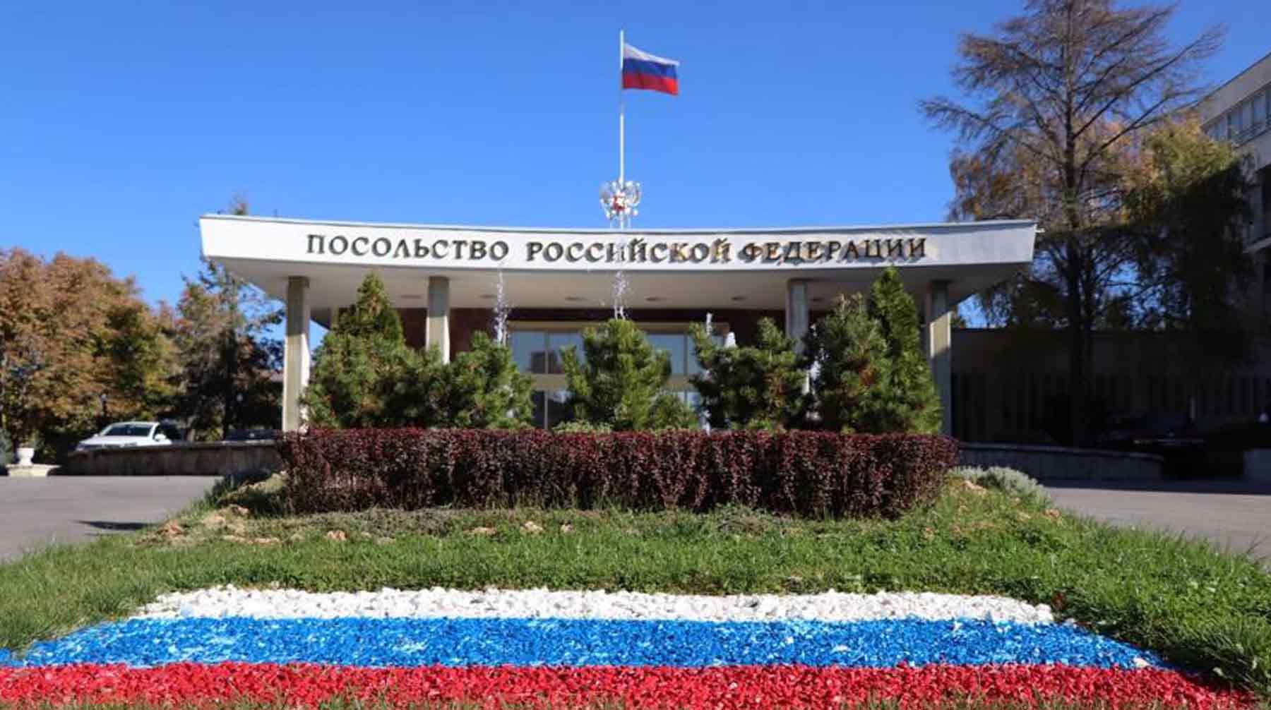 российское посольство в анкаре фото кошек ушной клещ